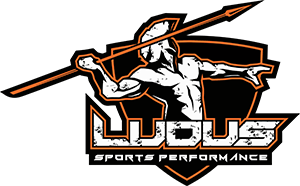 Ludus Sports Performance